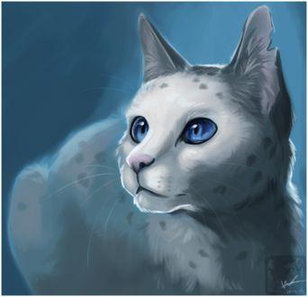 Фото Пятнисто-белая кошечка с голубыми глазами смотрит вверх, by ashkey