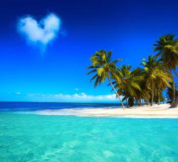 Фото Лазурное море омывает тропический остров с пальмами