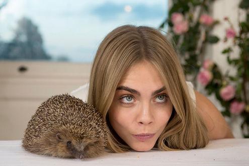 Фото Британская топ-модель и актриса Cara Delevingne / Кара Делевинь рядом с ежиком