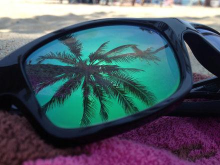 Фото В затемненном стекле солнцезащитных очков, лежащих на пляжном полотенце, отражается пальма