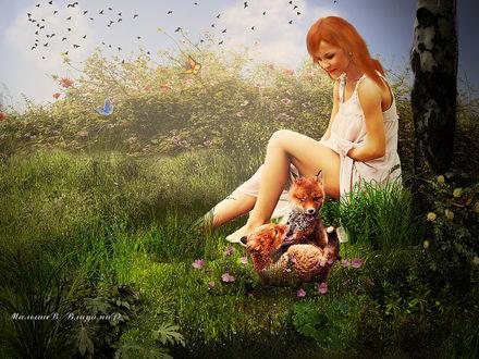Фото Девушка сидящая на траве у дерева, смотрит как играют лисята