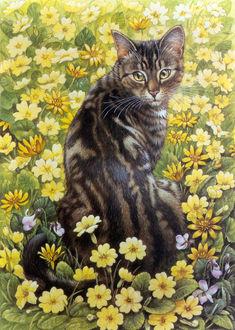 Фото Полосатая кошка сидит среди желтых цветов