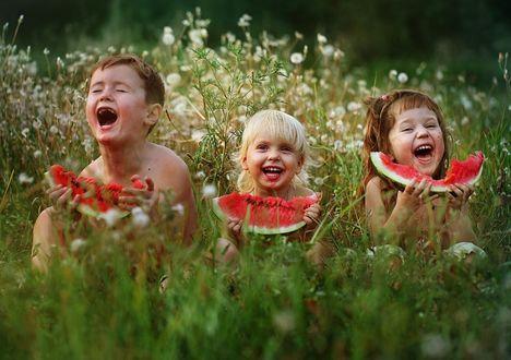 Фото Счастливые дети с дольками арбуза в руках сидят в высокой траве среди одуванчиков