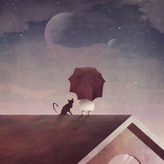 Фото Девочка с зонтиком и кошка на крыше дома