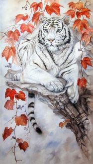 Фото Белый тигр лежит на краю скалы возле веток винограда с осенними листьями, by IrenaDem