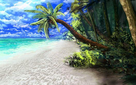 Фото Лазурное море омывает тропический остров