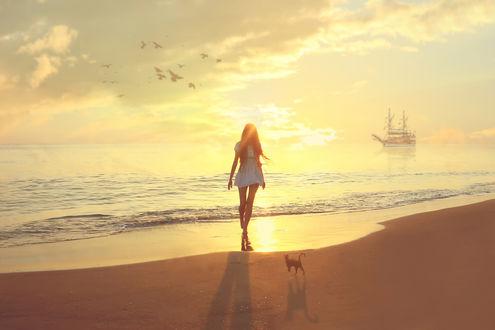 Фото Девушка с кошкой гуляет по берегу моря