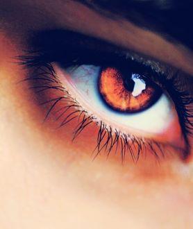 Фото Женский карий глаз, фотограф Deeevilish