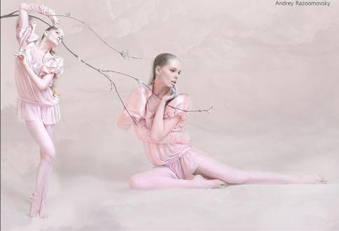 Фото Девушки в туниках на розовом фоне, работа Andrey Razumovsky / Андрея Разумовского