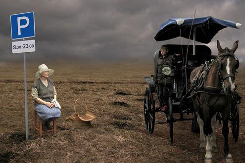Фото Парень - извозчик ищет в поле место для парковки своей лошади, фото Nina Piatrouskaya / Нина Петровская