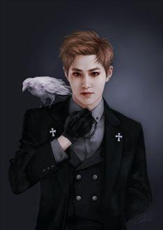 Фото Сухо / Suho / Ким Чун Мен / Kim Joon Myun-актер, певец, участник группы EXO, с вороном-альбиносом на плече, by omurizer