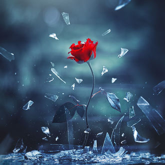 ���� ������� ���� ����� ��������, by Ashraful Arefin