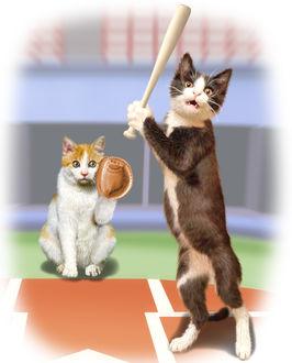 Фото Коты играют в бейсбол, by トシ