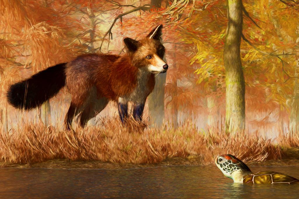 всё это фото лиса и черепаха вместе занавеси этого дорогого
