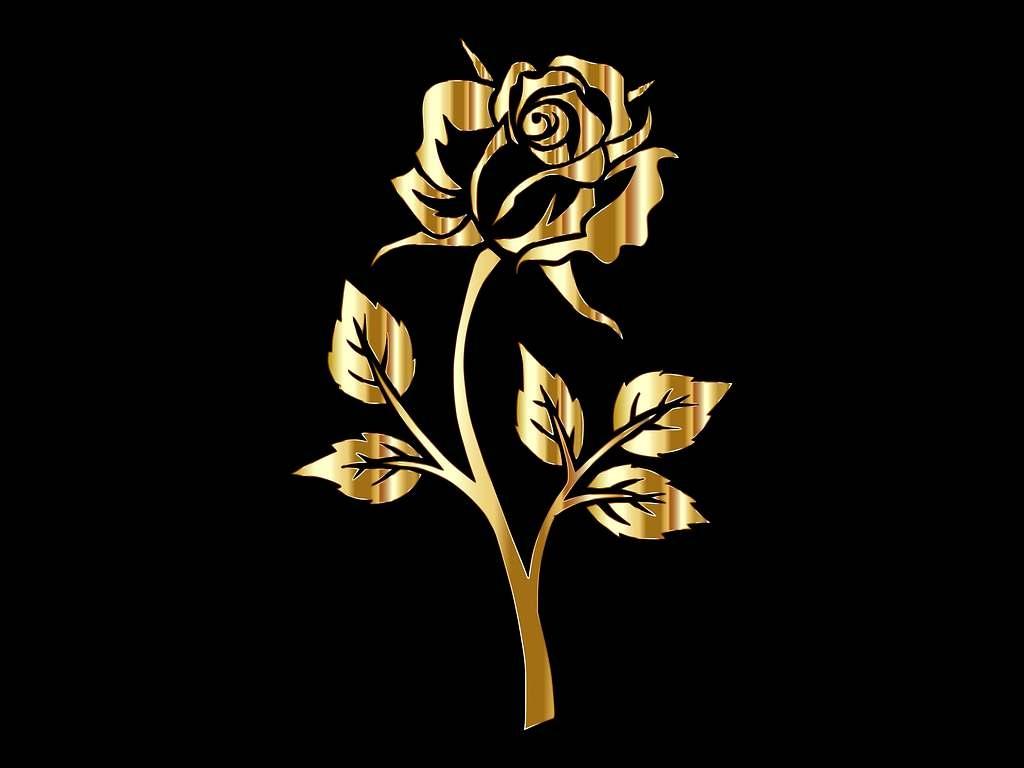 Золотые розы картинки на телефон