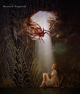 Фото Девушка сидит в огромной яме. на стене паук с паутиной, by Малышев Владимир