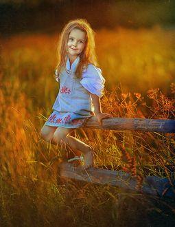 Фото Девочка с длинными рыжими волосами сидит на деревянном заборе, фотограф Наталья Законова