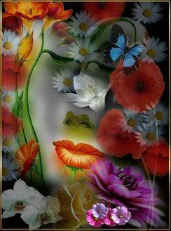 Фото Ромашки, маки и бабочки, лицо девушки