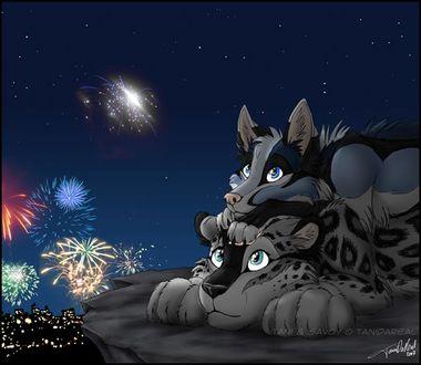 Фото Волк лежит на леопарде и они наблюдают салют над ночным городом, by Trenchmaker
