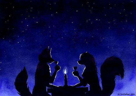 Фото Романтический ужин лиса и лисы, под звездным небом, by TaniDaReal