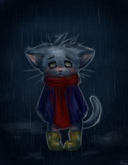 Фото Грустный котенок стоит под дождем, by sveenka
