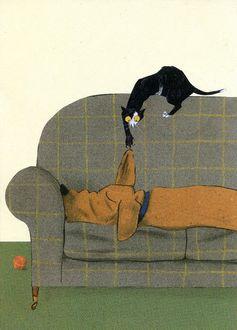 Фото Черная кошка дразнит спящую на диване таксу, дергая ее за ухо, by Manon Gauthier