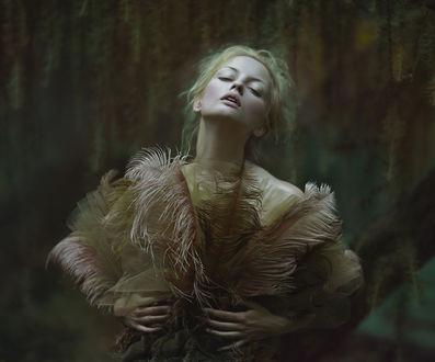 Фото Девушка держит в руках перья, фотограф Agnieszka Lorek