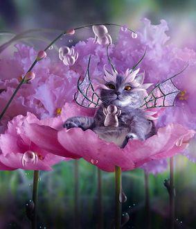 Фото Летающий кот отдыхает в розовом кресле-цветке, by Alliot