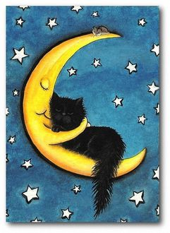 Фото Полумесяц обнимает спящую на нем черную кошку, Amy Lyn Bihrle