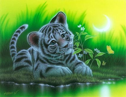 Фото Грустный тигренок лежит на траве у воды, by art of Kentaro Nishino