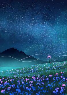 Фото Человек стоит в поле с цветами на фоне ночного неба, иллюстратор Jane Bak