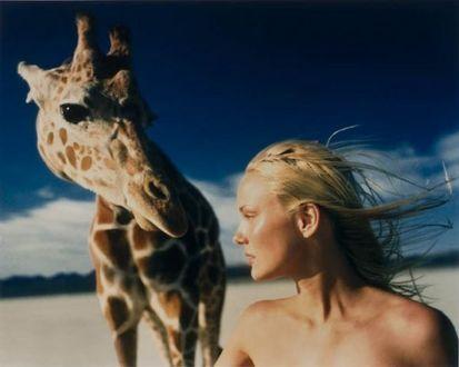 Фото Девушка рядом с жирафом, фотограф Michel Comte
