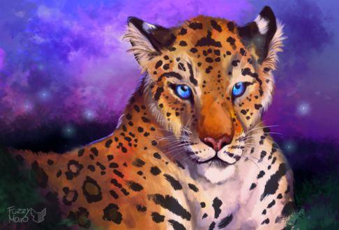 Фото Леопард с голубыми глазами лежит в траве, by FuzzyMaro