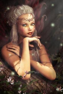 Фото Девушка эльф с зелеными глазами в лесу