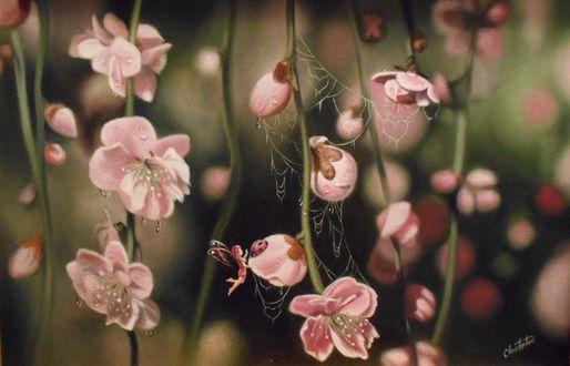 Фото Феечка гладит божью коровку, сидящую на цветке сакуры, by ChristopherPollari