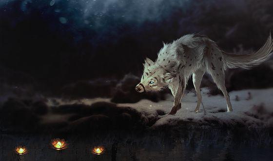 ���� ��������� ���� ������� �� ���������� �������� � �����, by Yellwolf