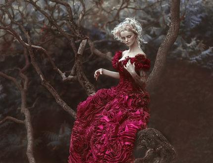 Фото Девушка в длинном платье сидит на дереве, фотограф Agnieszka Lorek