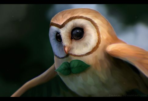 ���� Rowlet / ������ �� ���� Pokemon / �������, by Chiakiro