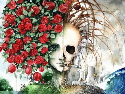 Фото Работа Comparison - Climate change / Сравнение - изменение климата, курящий череп и девушка в красных розах by Jujupie on DeviantArt