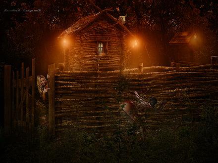 Фото В вечернее время, девушка выйдя за калитку увидела, как через забор подглядывают