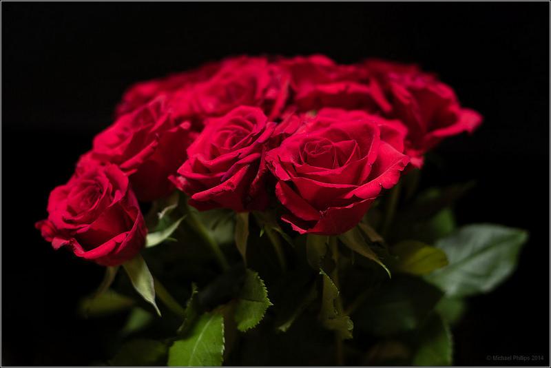 Букет роз и кольцо фото
