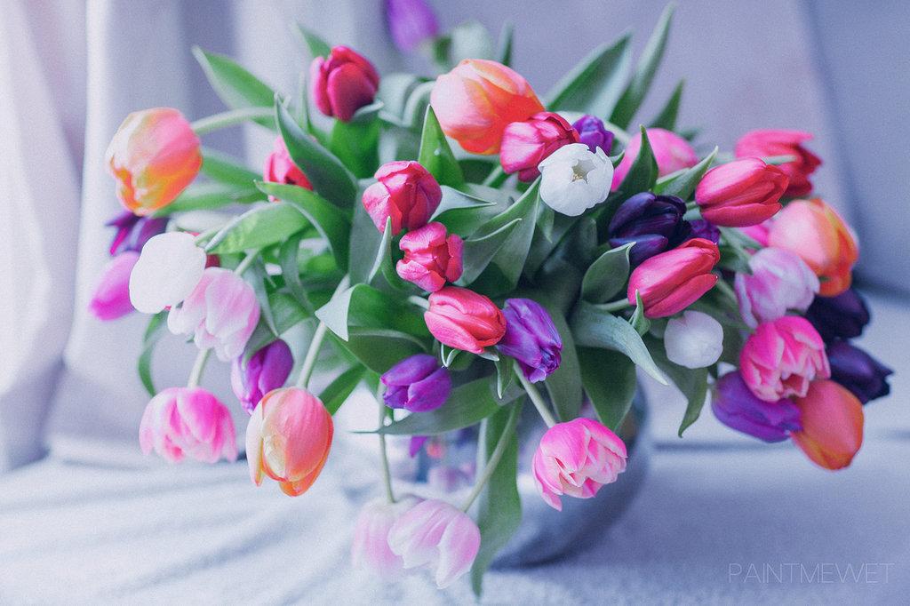 Букет тюльпанов в вазе, by paintmewet