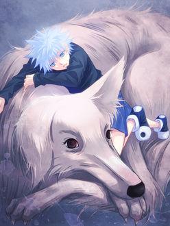 Фото Мальчик лежит, обняв свою собаку