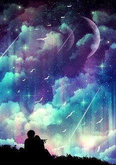 Фото Парень и девушка сидят обнявшись в траве и смотрят на падающие звезды и чаек в ночном небе, by Erisiar