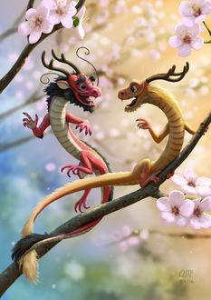 Фото Два дракончика на ветке цветущей сакуры, by AndrewMcIntoshArt