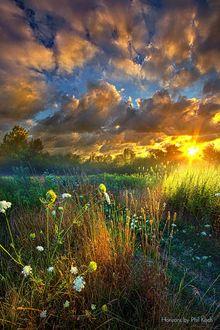 Фото Закат солнца над полем, by Phil Koch