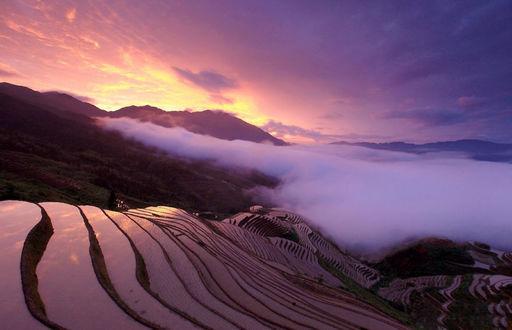 ���� Longsheng Rice Terrace / ������� �������, China / �����