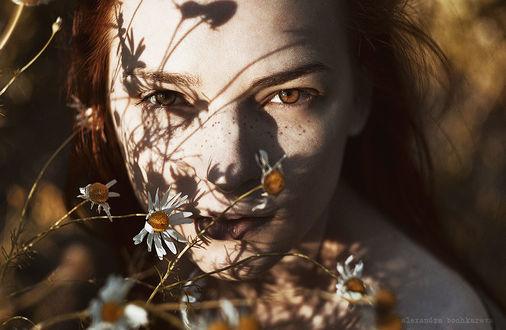 Фото Девушка за ромашками, фотограф Alexandra Bochkareva