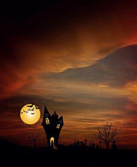Фото Домик у кладбища, ведьма, полная Луна и стая летучих мышей, ночной пейзаж, фото + 3д графика, by Cocoparisienne