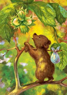 Фото Медвежонок с узелком на палочке на плече, тянется к орешкам на ветке, by Таня Сытая / Tanya Sitaya